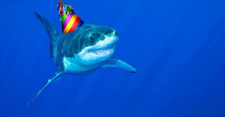 SharkWeekParty-1465938342
